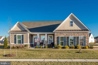 Single Family Home For Sale: 29998 Judson Lane
