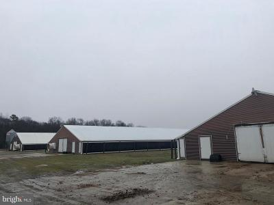 Greenwood Farm For Sale: 13625 Tull Road