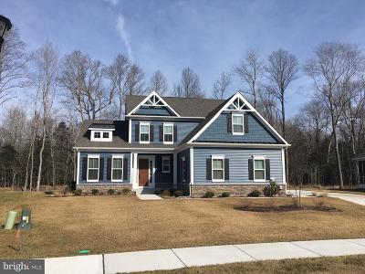 Frankford Single Family Home For Sale: 39042 Crows Nest Lane #91
