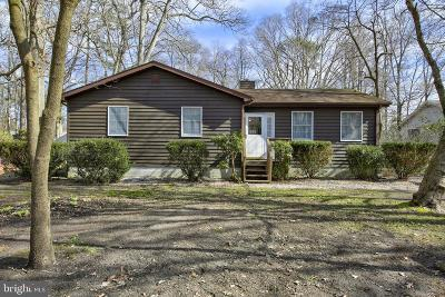Dagsboro Single Family Home For Sale: 33939 Hiawatha Boulevard