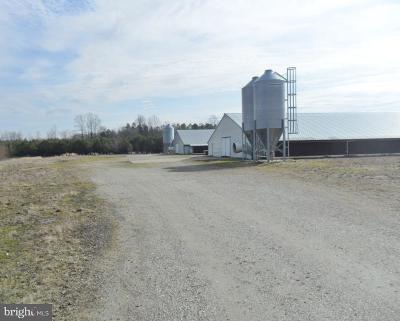 Farm For Sale: 12895 Oak Road