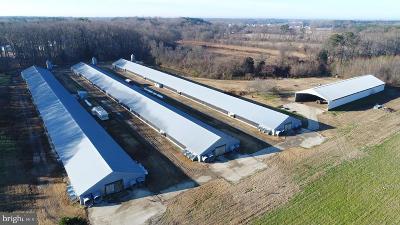Farm For Sale: 12233 Line Road E