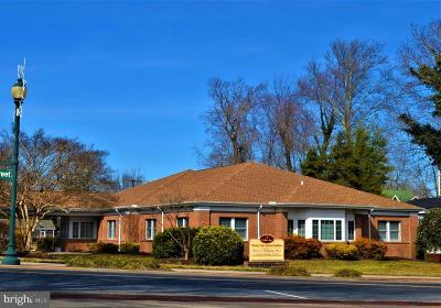 Sussex County Commercial For Sale: 1 Cedar Avenue
