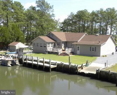 Dagsboro Single Family Home For Sale: 30161 New Castle Road