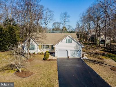 Dagsboro Single Family Home For Sale: 20 Manor Drive