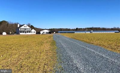 Farm For Sale: 12101 Tuckers Road