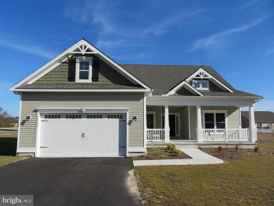 Single Family Home For Sale: 24341 Givens Circle
