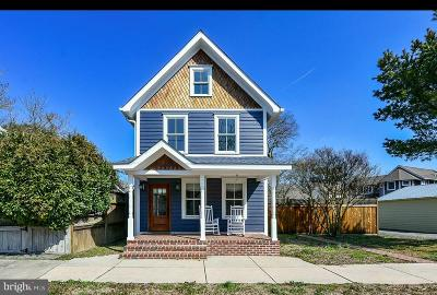Lewes Single Family Home For Sale: 125 Dewey Avenue