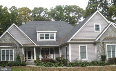 Milford Single Family Home For Sale: 20570 Wilson Drive