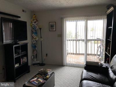 Rehoboth Beach Condo For Sale: 35979 Condo Drive #302