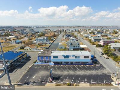 Fenwick Island Commercial For Sale: 708 Coastal Highway