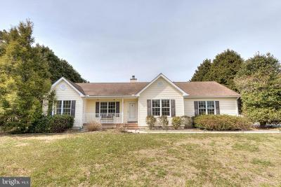 Sussex County Single Family Home For Sale: 26 Gosling Drive