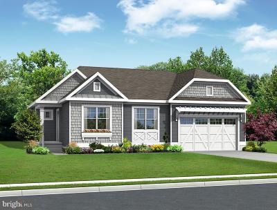 Single Family Home For Sale: 24018 Benjamin Harrison Circle