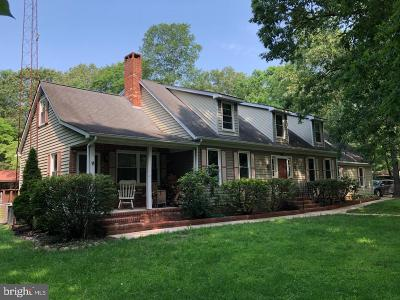 Sussex County Single Family Home For Sale: 22146 Reynolds Pond Road