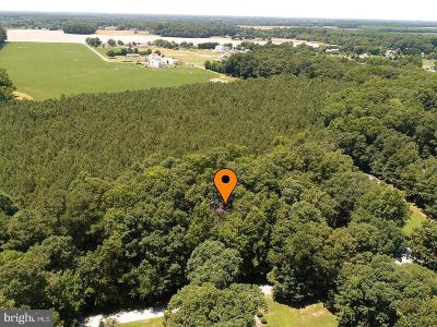 Residential Lots & Land For Sale: Lot 21 Tennessee Walk