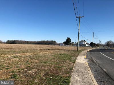 Frankford DE Residential Lots & Land For Sale: $1,500,000