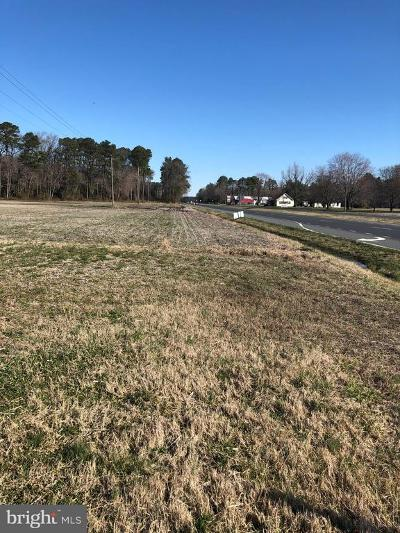 Selbyville DE Residential Lots & Land For Sale: $3,100,000