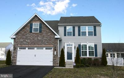 Millsboro Single Family Home For Sale: 405 Amberly Court