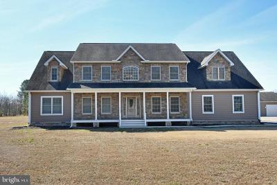 Sussex County Single Family Home For Sale: 19019 Speed Street