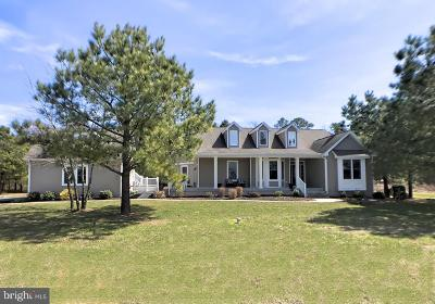 Dagsboro Single Family Home For Sale: 32612 Falling Point Road