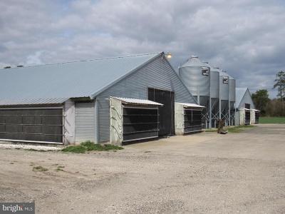 Laurel Farm For Sale: 30342 Scott Land Road