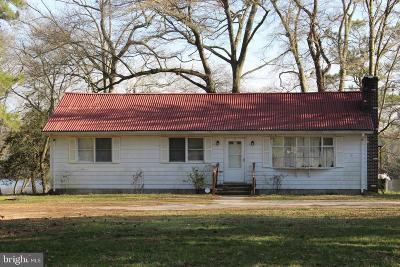 Seaford Single Family Home For Sale: 24797 German Road