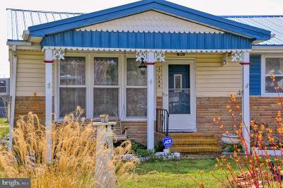 Rehoboth Beach Single Family Home For Sale: 37200 Burton Avenue