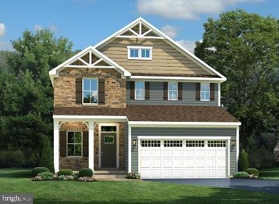 Ocean View Single Family Home For Sale: 36616 Red Cedar Loop