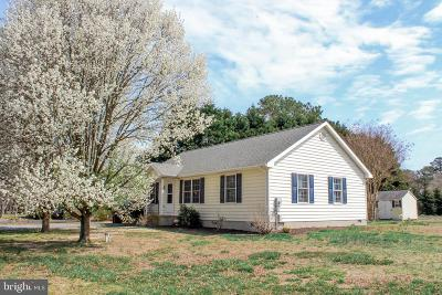 Dagsboro Single Family Home For Sale: 34120 Hiawatha Boulevard