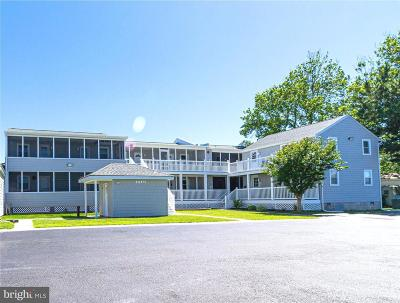 Fenwick Island Single Family Home For Sale: 37534 Lighthouse Road #104