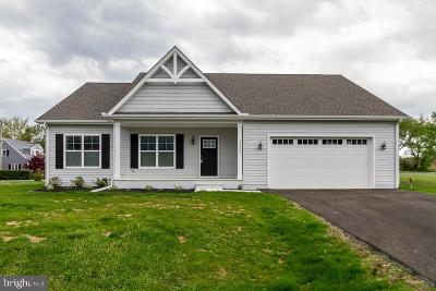 Lewes Single Family Home For Sale: 33065 Kiwi Ct E