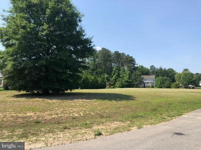 Seaford Residential Lots & Land For Sale: 129 Village Drive