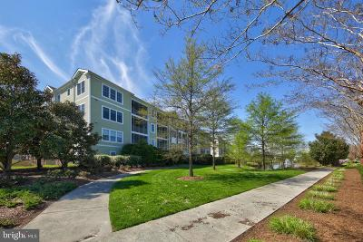 Selbyville Condo For Sale: 38415 Boxwood Terrace #102