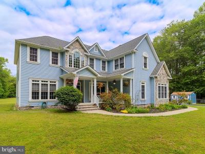 Millsboro Single Family Home For Sale: 23383 Arnold Lane