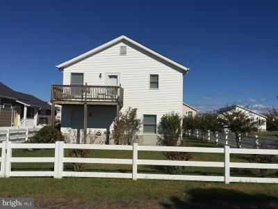 Fenwick Island Single Family Home For Sale: 10 High Tide Lane