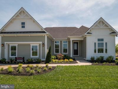 Single Family Home For Sale: 31614 Topsail Drive #20