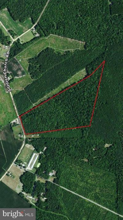 Ellendale Residential Lots & Land For Sale: E Route 42