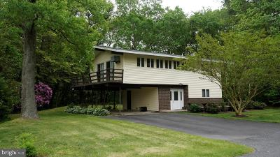 Lewes Single Family Home For Sale: 25 Lakewood Drive