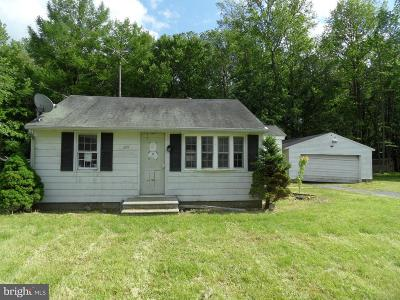 Sussex County Single Family Home For Sale: 207 Willow Street