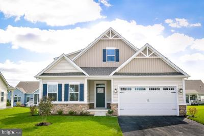 Sussex County Single Family Home For Sale: Tbd Estuary Boulevard