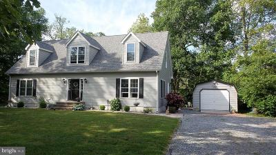 Sussex County Single Family Home For Sale: 10757 Patriot Court