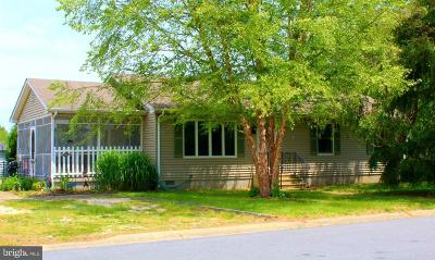 Lewes Single Family Home For Sale: 114 Beach Plum Place