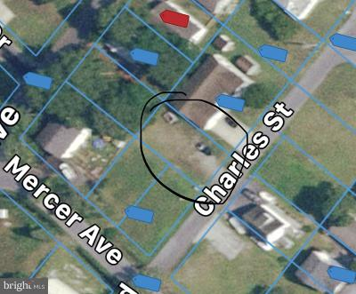 Residential Lots & Land For Sale: 41 Charles Street