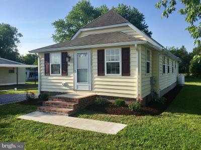 Ellendale Single Family Home For Sale: 18118 Beach Highway