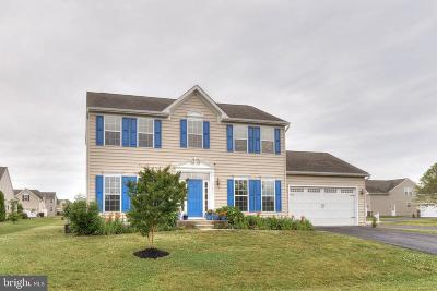 Lewes Single Family Home For Sale: 17815 Sandcastle Cove