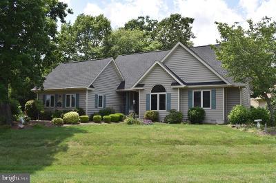 Dagsboro DE Single Family Home For Sale: $399,000
