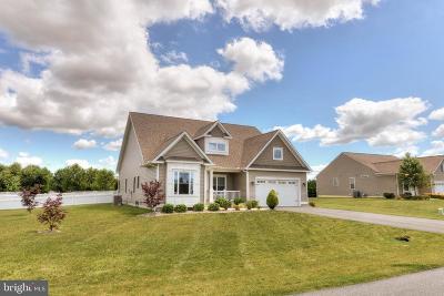 Lewes Single Family Home For Sale: 30839 Park Terrace