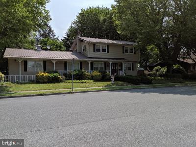 Seaford Single Family Home For Sale: 417 N Bradford Street