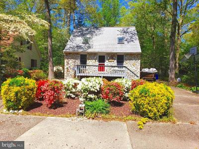Lewes Single Family Home For Sale: 33179 Woodland Ct S