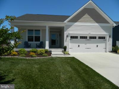 Lewes Single Family Home For Sale: 12137 Spicer Creek Avenue